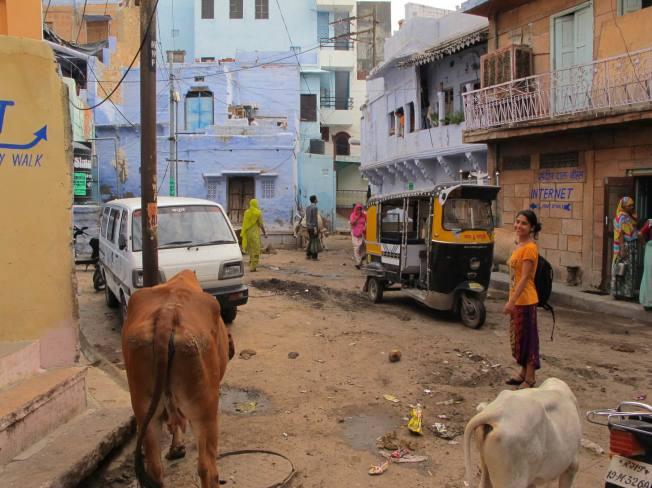Jodhpur sokakları