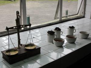 Fabrikada çay demleme dersi