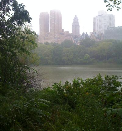 Puslu bir Central Park