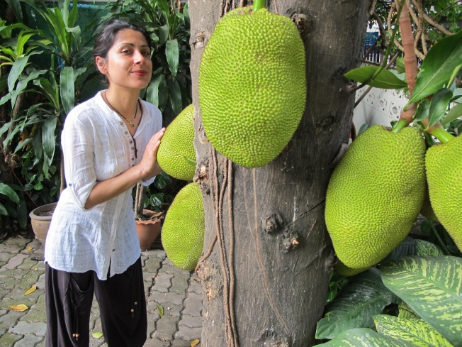 Jackfruit ya da Breadfruit (Ekmek meyvesi) - Mevsimi değildi sanırım, pazarlarda manavlarda satılanlarını bulup da yiyemedik