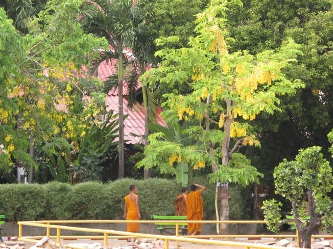 Chiang Mai'ın budist keşişleri