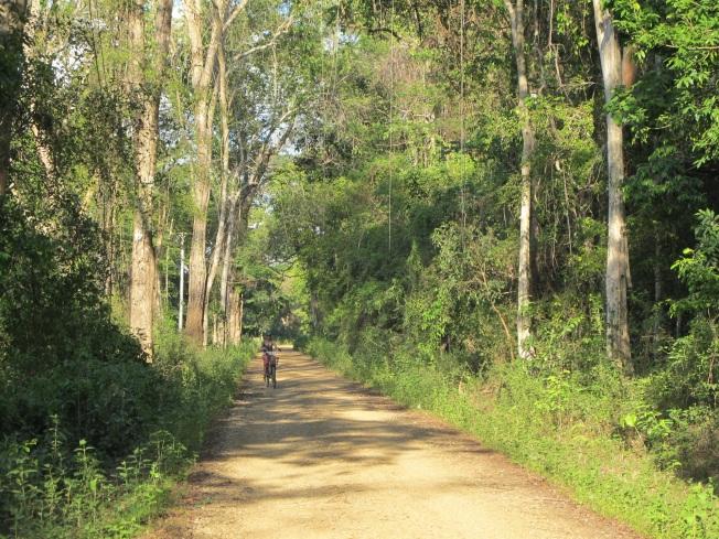 Ada yollarında bisiklet turu