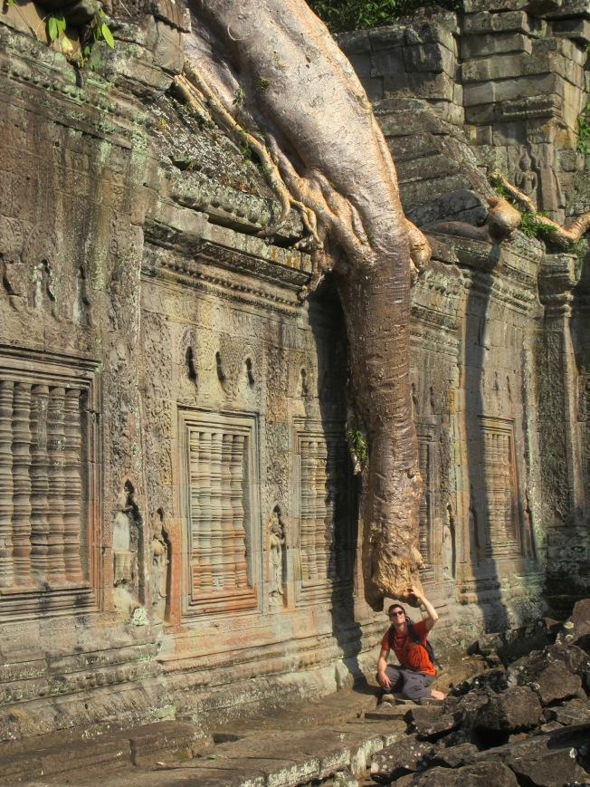 Tapınağı saran dev ağaç kökü