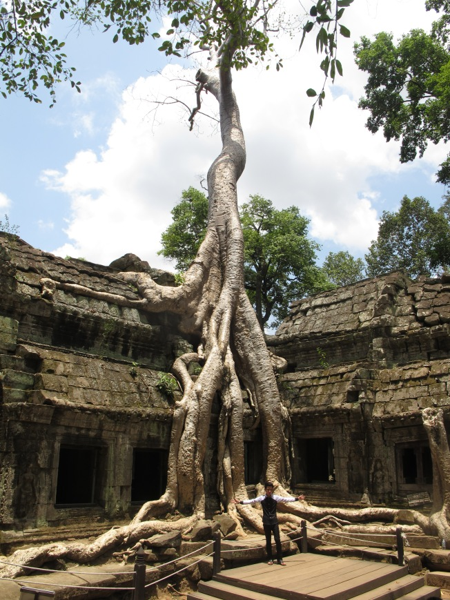 Ta Prohm Tapınağı