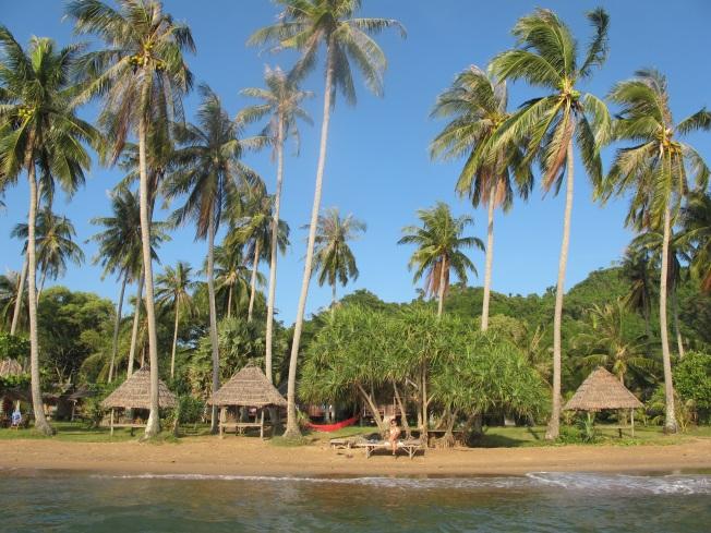Tavşan Adası'nda yerleşim yeri olan sahil şeridi. En arkada, kaldığımız bungalovlar görülebilir.