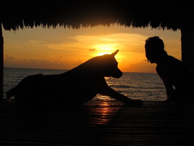 Adanın köpekleriyle günbatımını izlerken