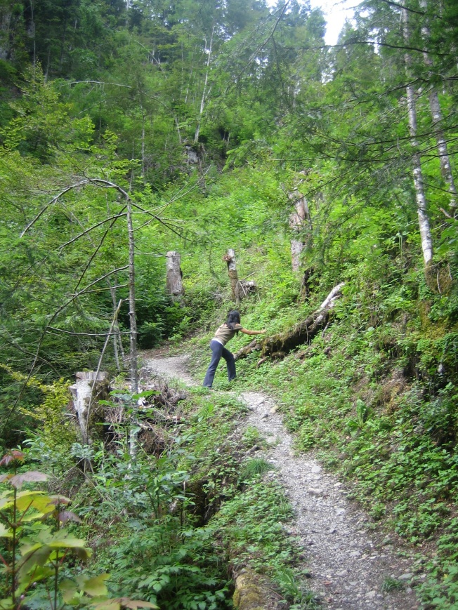 Yaz manzaraları - Dağ çileği toplarken