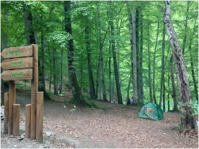 Kamp ve Piknik alanları