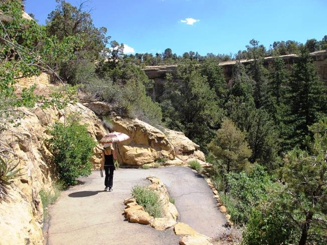 Spruce Tree yürüyüş yolu