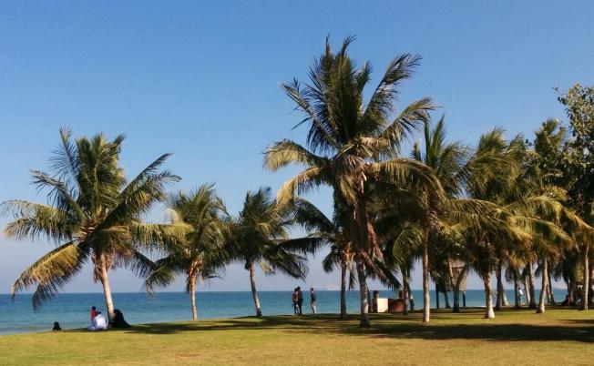 5 yıldızlı otel değil halk plajı. Çöp görebilen beri gelsin