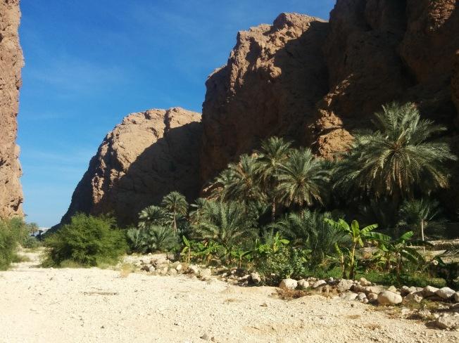 Wadi Shab'ın yeşili