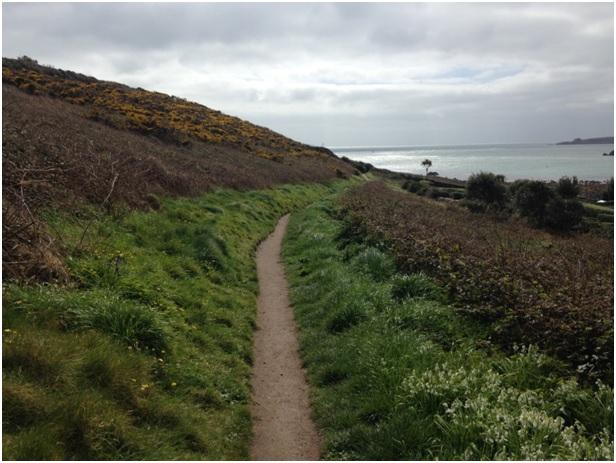 Yürüyüş rotamız genelde bu şekilde daracık bir yoldu, iki kişi yan yana anca yürüyebiliyordu, gerçi güzelliği de bu değil mi?